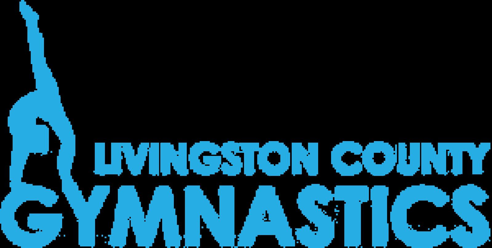 Livingston County Howell Gymnastics